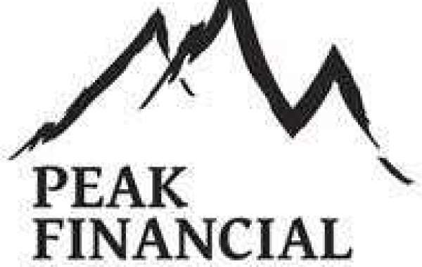 Did the Project Financial Peak syndicated program include Financial Peak Aussie System?