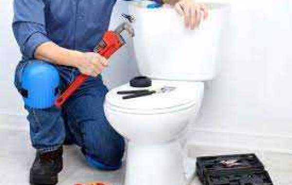 How to Fix a Slow Draining Toilet: A DIY Guide