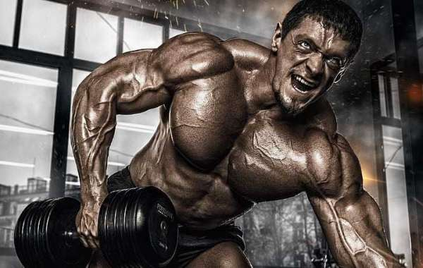 XL Real Muscle Gainer: More Strength, Massive Body